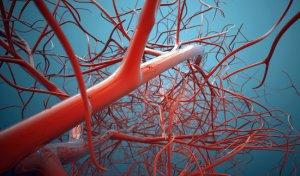 ანგიოლოგიური (სისხლძარღვოვანი) პათოლოგიების კომპლექსური კვლევა