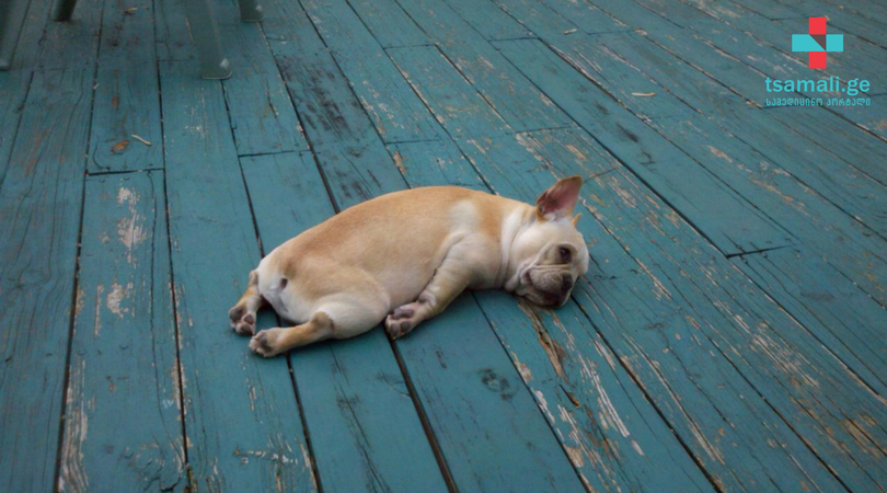 8 უჩვეულო რეაქცია სტრესზე: როგორ მივხვდეთ, რომ დასვენების დროა