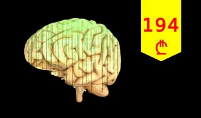 თავის ტვინის კომპიუტერული ტომოგრაფია და ექსტრაკრანიალური სისხლძარღვების კვლევა