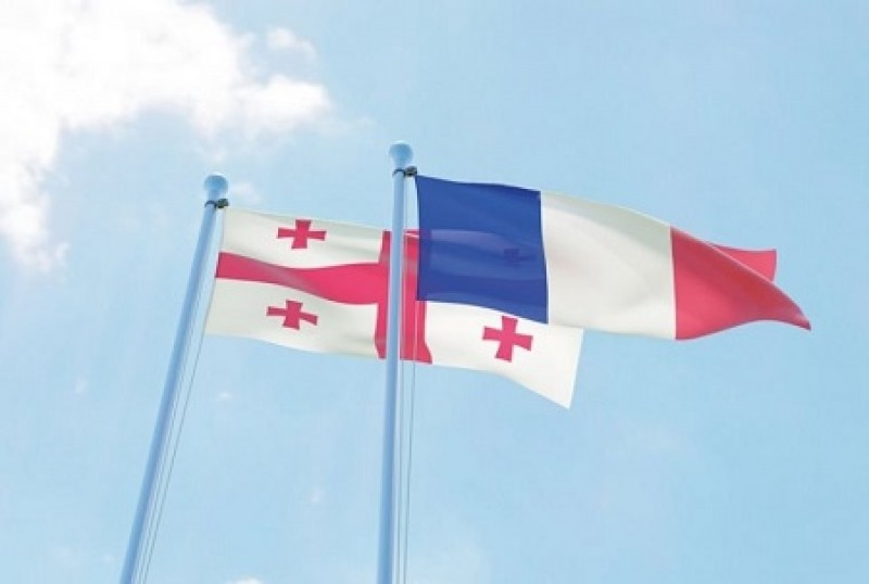 საფრანგეთი საქართველოს ჯანდაცვის პროგრამების განხორციელებაში დაეხმარებას დაჰპირდა