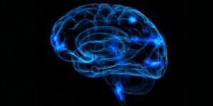 ემოციების და სტრესის მართვა - ტვინის გამოკვლევა